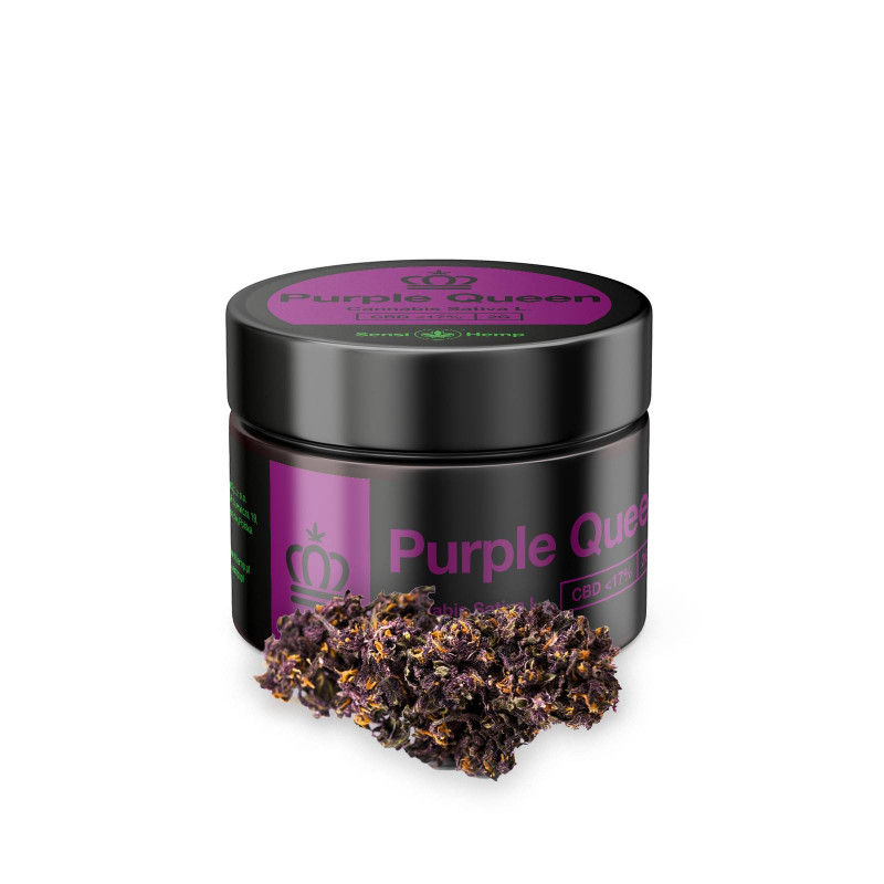 Purple Queen - Susz CBD 17% 2g Sensi Hemp