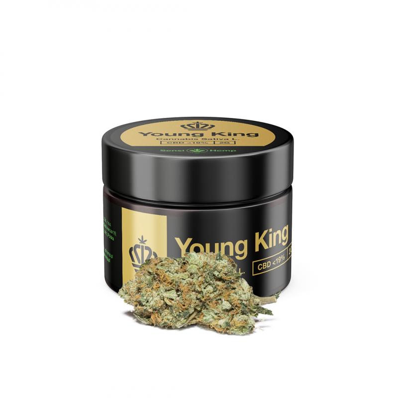 Young King - Susz CBD 19% 2g Sensi Hemp